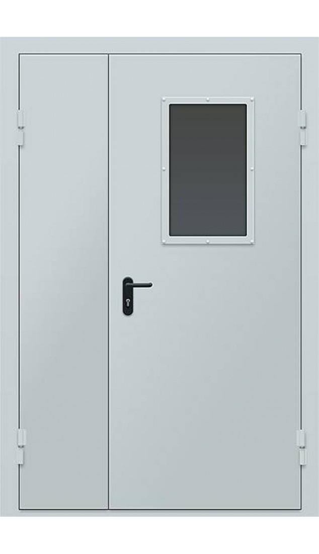 Двери технические  с окном